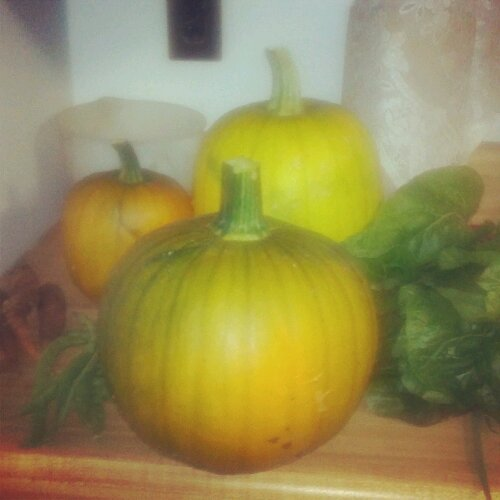 Three not-so-little-pumpkins