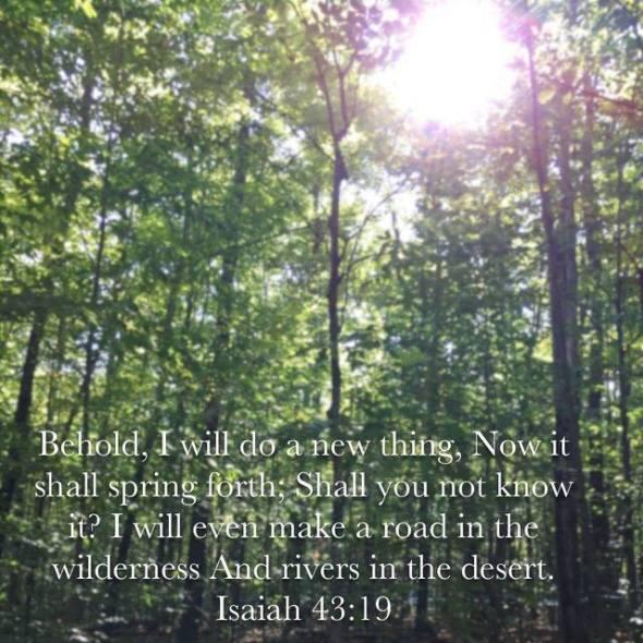 behold verse